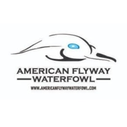 American Flyway Waterfowl