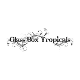 Glass Box Tropicals