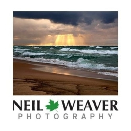 Neil Weaver Photography