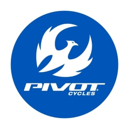 Pivot Cycles