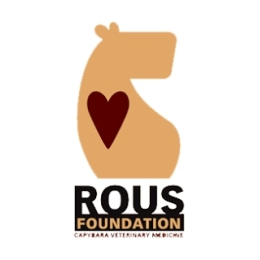 ROUS Foundation