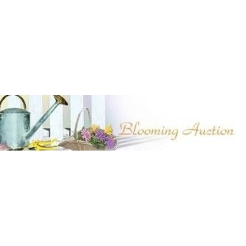 Blooming Auction