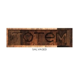 TOTeM Salvaged