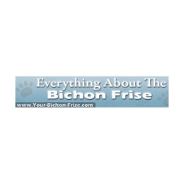 Everything About Bichon Frise